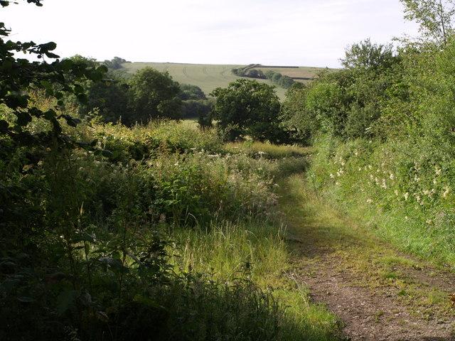 Track near Gray's Bridge Farm