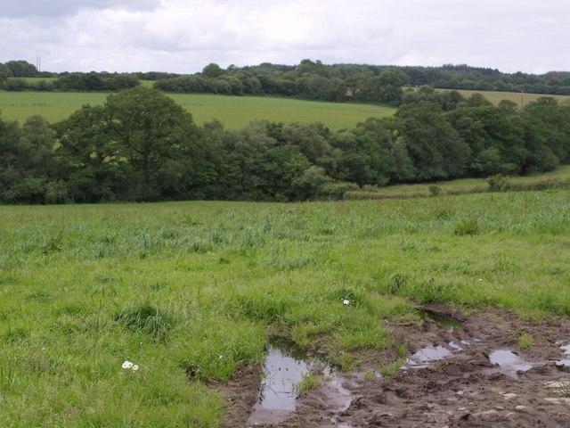 Valley near Heath Hill