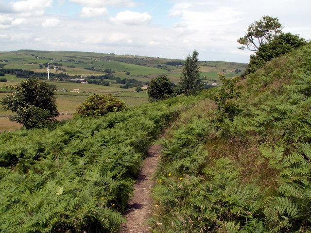 The Bridleway around Hartcliff Hill