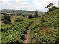 SE2101 : The Bridleway around Hartcliff Hill by John Fielding