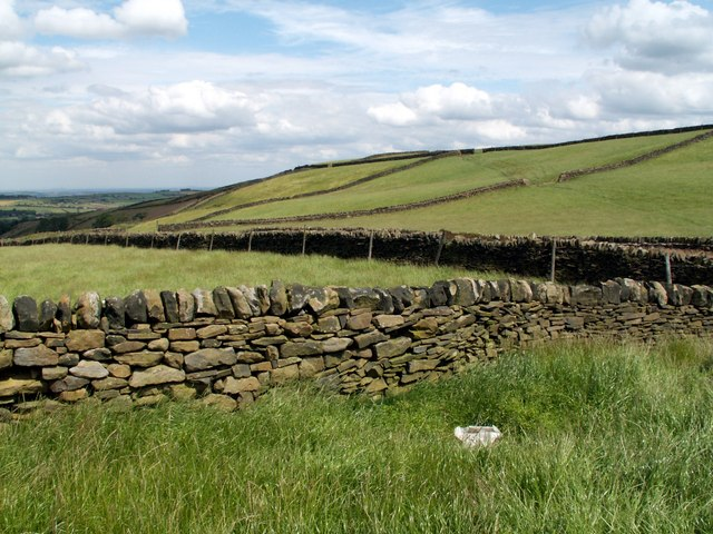 Fields and Boundary Walls Hill Side