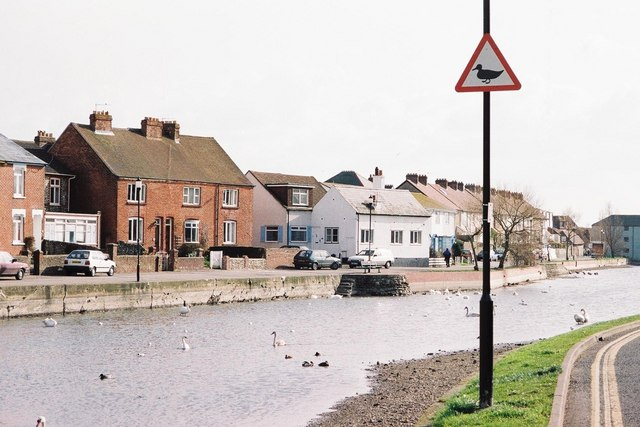 Emsworth millpond: beware of the ducks!