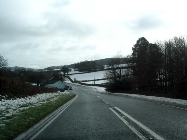 Snowy A40