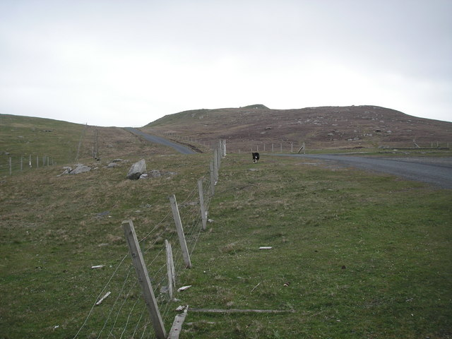 East Hogaland Road