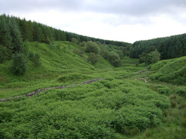 Secluded Valley of Balglass Burn