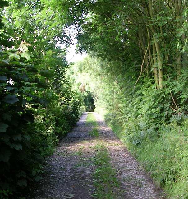Priesthorpe Lane