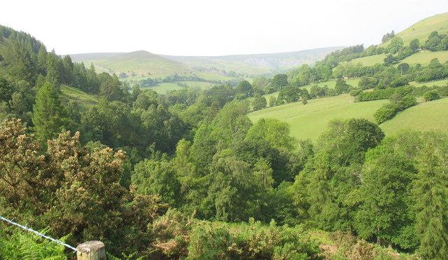 The sylvan Nant y Pandy valley
