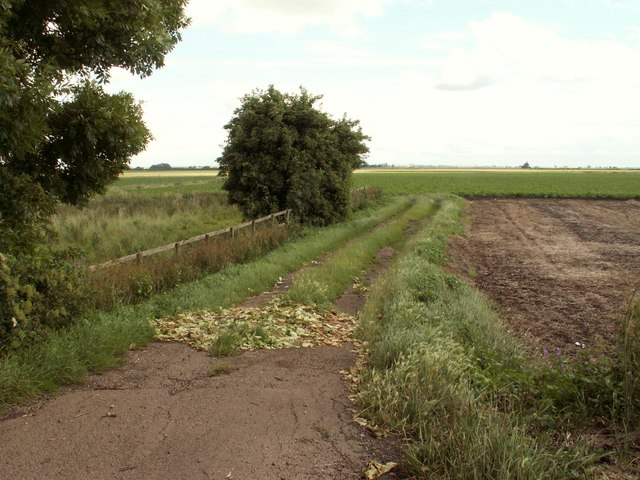 A track known as Pickle Fen Drove