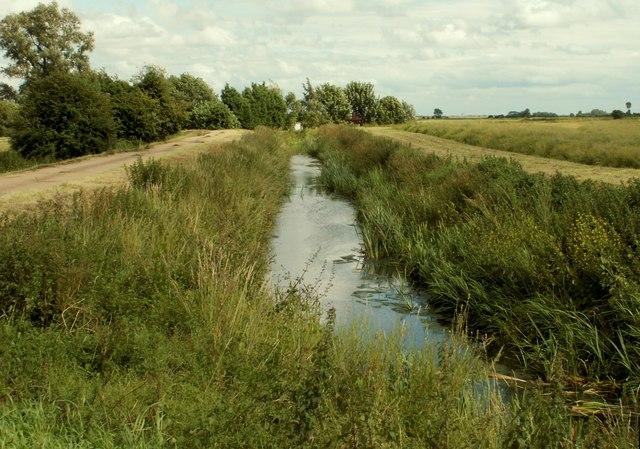 A dyke near Holwood Farm