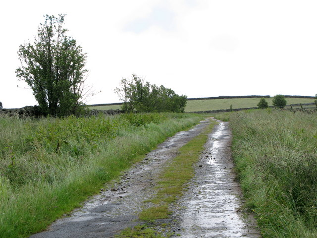 Track to the moor