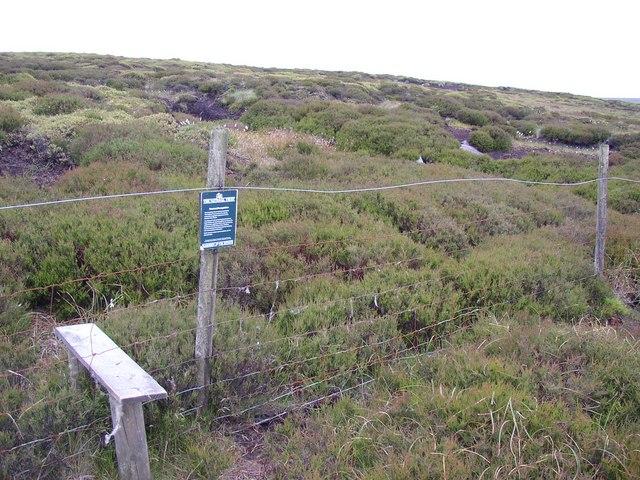 Moorland vegetation regeneration area, Birk Moss, Marsden