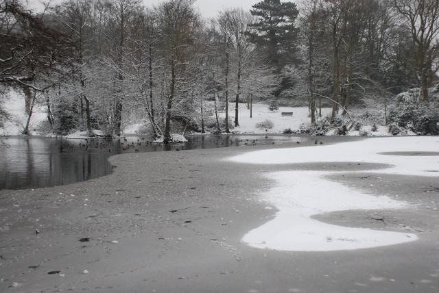 Haden Hill Park - Lower Pool