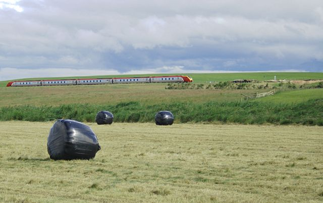 Bales and train