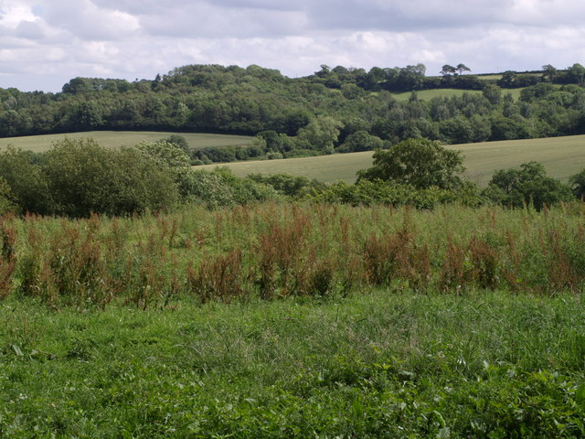 Southeast from Barley Hill