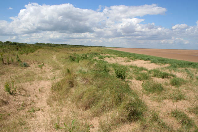 Saltfleetby-Theddlethorpe Dunes Nature Reserve