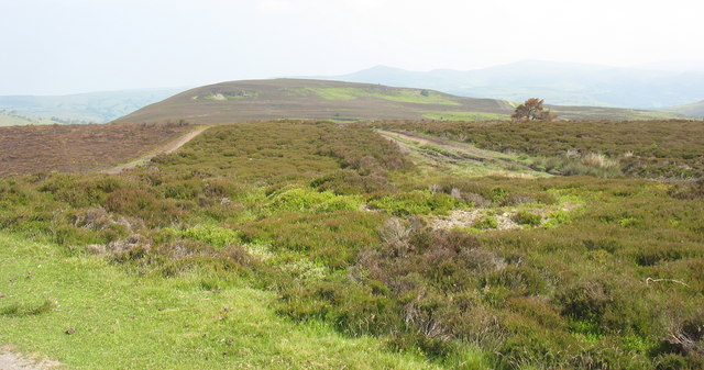 Track on the ridge extending to Moel Fferna