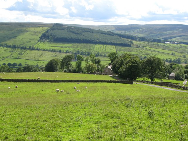 Pastures above Keenleyside Hill Farm