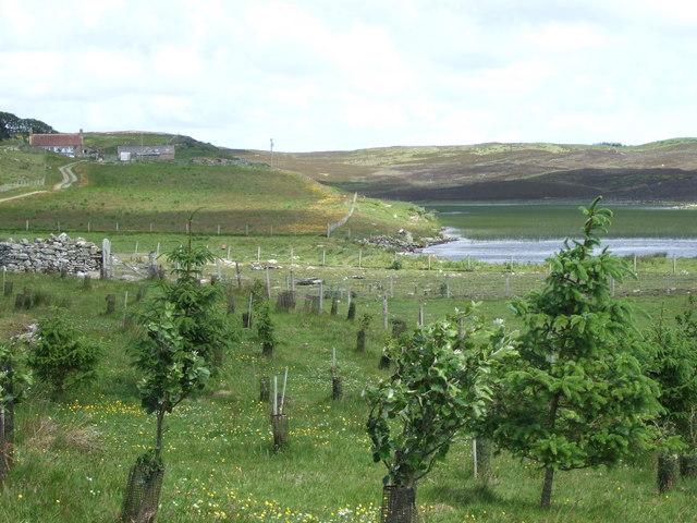 Loch Waternan