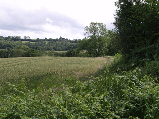 Near Barley Hill Farm