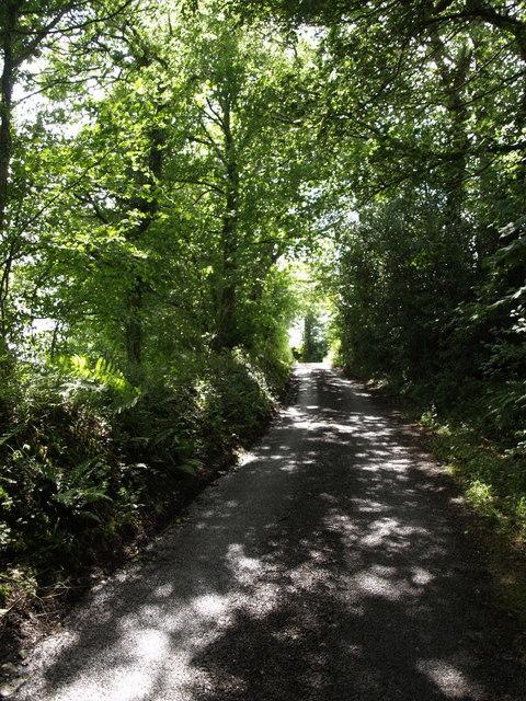 Lane to Sticklepath