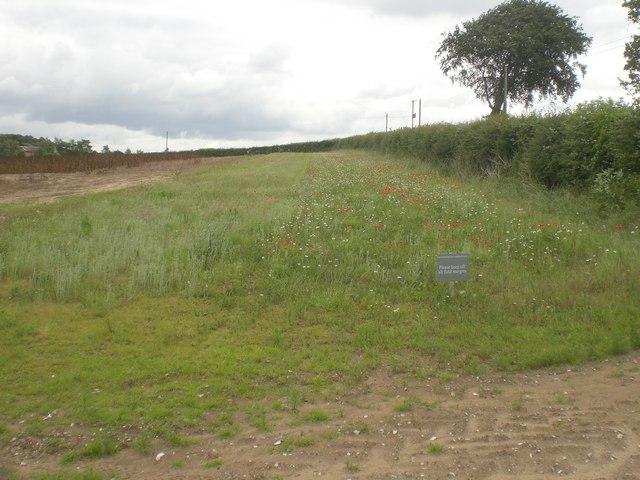 Environmental Stewardship Scheme