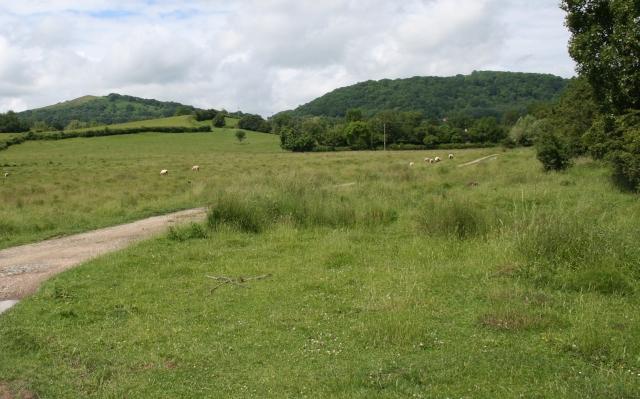 Coombe Green Common