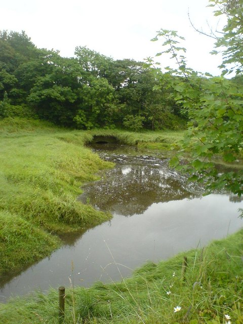 Pond from Cycleway near Conder Green