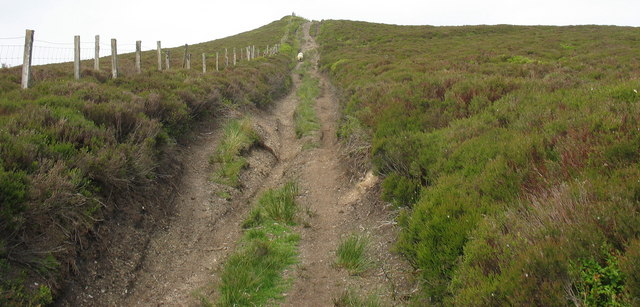 The final climb to the summit plateau of Moel Fferna