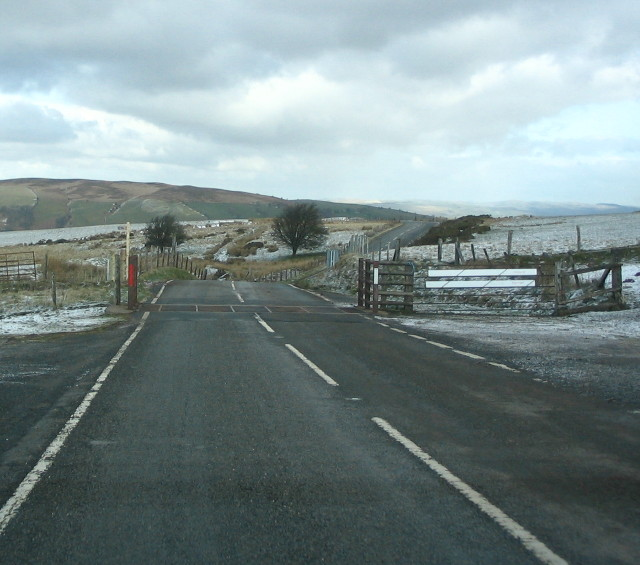 Cattle Grid On Mynydd Eppynt