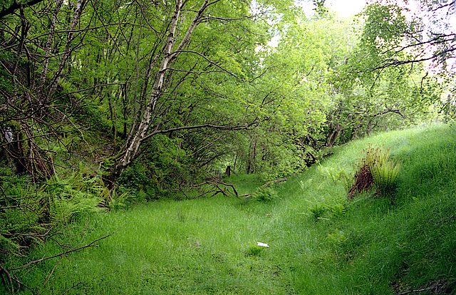 Mid-Wales Railway trackbed at Pont Marteg