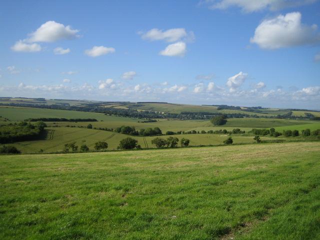 Downland near Wylye 3