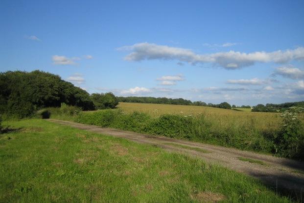 Bridleway near Wylye Down, Wylye