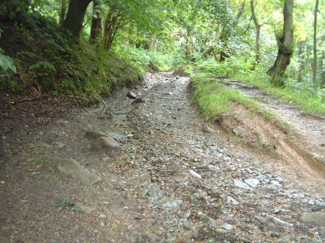 Snape Rake Lane