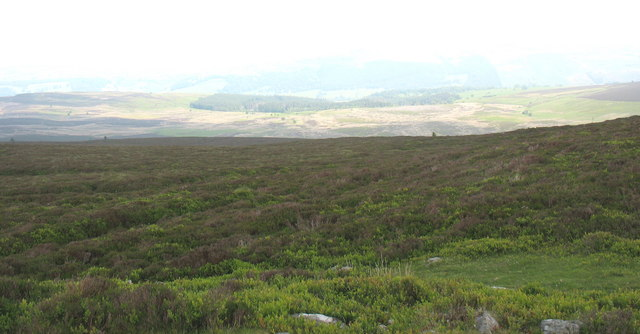 View NE from the summit cairn of Moel Fferna