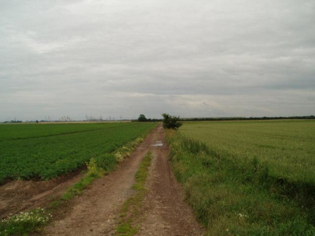 Lane over Paupers drain to Poplar Farm