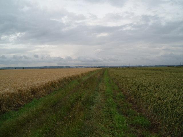 Grass lane towards Eastoft Boundary Dyke