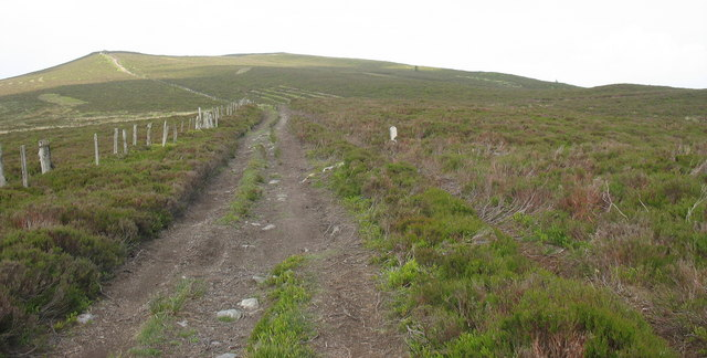 Ecology study plots in the moorland