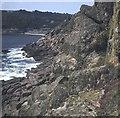 SW4524 : Lamorna Cove by Trevor Rickard