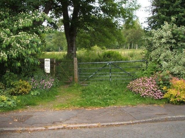 Side Gate - Back Door
