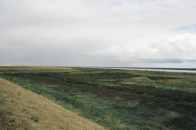 The bank of the Lynn Channel