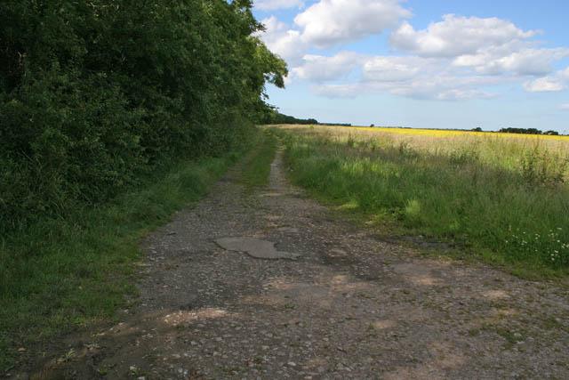 Bridleway near Gayton le Marsh