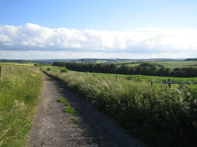 Bridleway east of Teffont Down 3