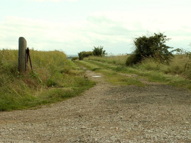 Farm track, just east of Woodhurst