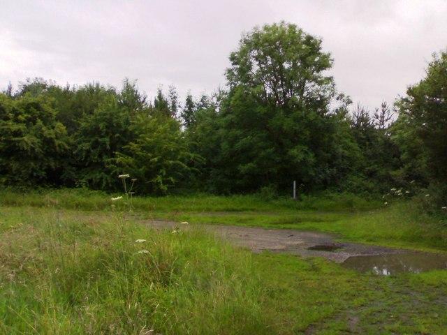Tracks around proving ground