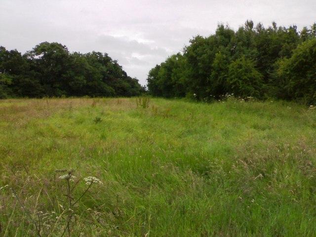 Tapering field