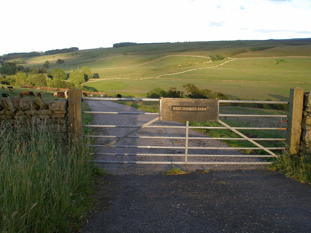 Gate and road to West Charity Farm