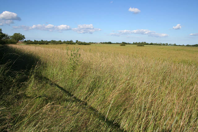 Farmland between South Reston and Great Carlton, Lincolnshire