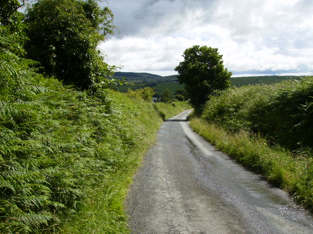 Country lane going down from Ballavitchel Farm to Crosby
