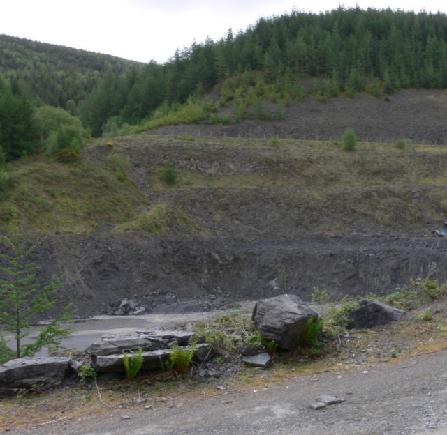 A Quarry In Halfway Forest
