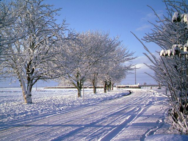 Winter scene on Luddington Road